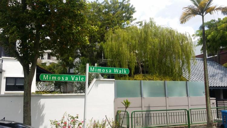 Mimosa Villas